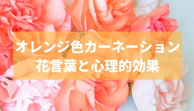 カーネーション オレンジ色 花言葉 おすすめ
