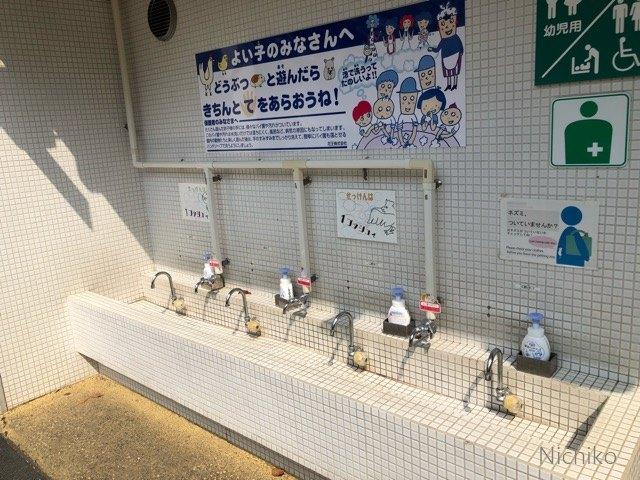 野毛山動物園 動物ふれあい 手を洗う