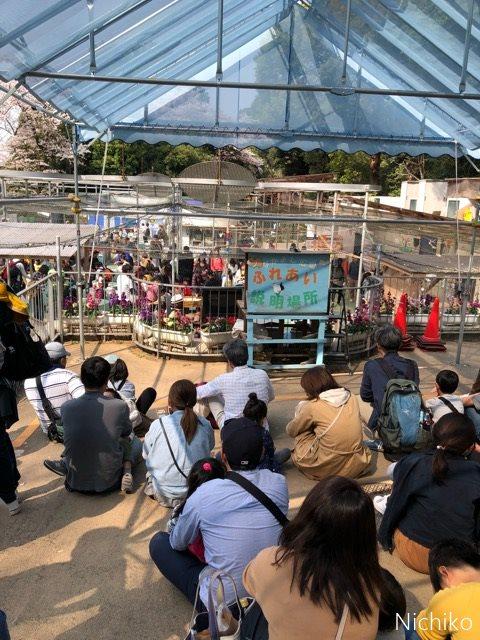 野毛山動物園 ふれあい体験「なかよし広場」