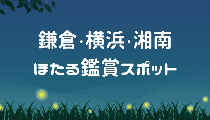 鎌倉・横浜・湘南でホタル 見える時期・条件・時間帯