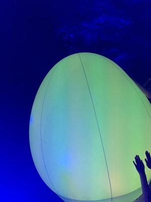 下鴨神社チームラボ糺の森の光の祭2019 混み具合(混雑)待ち時間を短くする方法 当日のチケット入手方法