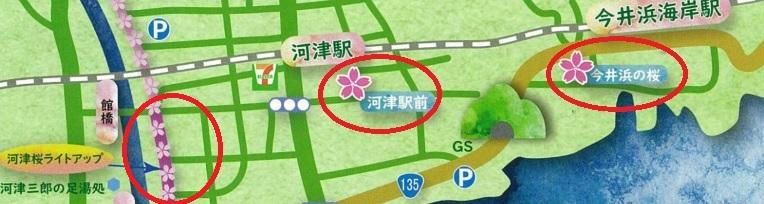 河津桜まつり2020 ライトアップ 場所 アクセス